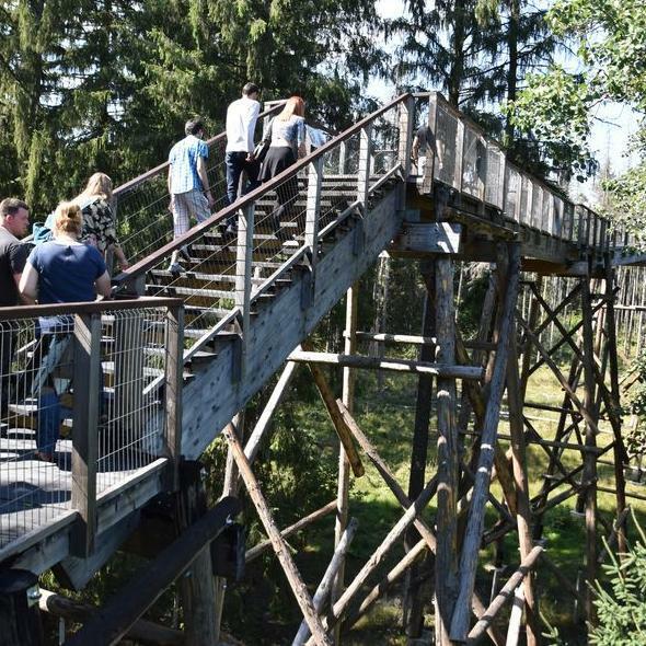 Dragos Voda Bison Nature Reserve